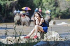 Elephants tour Royalty Free Stock Photo