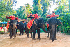 Elephants waiting for the tourists to take them to Phnom Bakheng temple Stock Photo