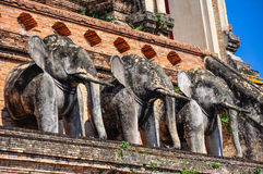 Elephants in Wat Chedi Luang in Chiang Mai, Thailand Stock Photos