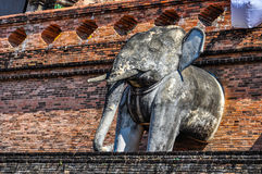 Elephants in Wat Chedi Luang in Chiang Mai, Thailand Royalty Free Stock Photos