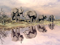 Elephants and water - 3D render. Many elephants standing in the desert next to quiet water by sunset light Royalty Free Stock Images