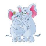 Elephants on a white background. Loving couple. Royalty Free Stock Photos