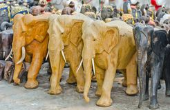 Elephants  for worship. Royalty Free Stock Images