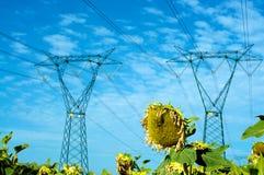 Eletricidade e natureza Fotos de Stock Royalty Free