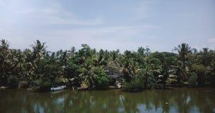 Elettricità statica d'attaccatura del fuco sopra le palme della foresta pluviale sulla sponda del fiume esotica ed hotel e case t stock footage