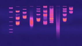 Elettroforesi del gel del DNA Fotografie Stock Libere da Diritti
