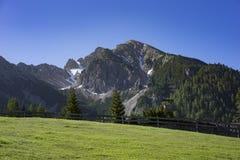 Elevação cercada do prado nas montanhas Imagem de Stock Royalty Free
