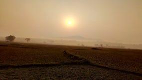 Elevação de Sun no inverno Fotos de Stock