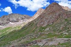 Elevação nas Montanhas Rochosas, Colorado Imagem de Stock Royalty Free