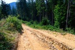 Eleva??o da estrada de terra nas montanhas entre os pinheiros altos contra o c?u azul foto de stock royalty free