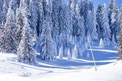 Elevador de esqui da neve Fotografia de Stock Royalty Free