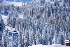 Elevador de esqui da neve Imagens de Stock Royalty Free