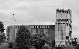 Elevador de grano abandonado Fotos de archivo