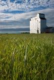 Elevador de grano de madera en pradera canadiense fotos de archivo