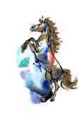 Elevando o cavalo Fotografia de Stock