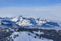 Elevata altitudine Ski Domain Immagine Stock