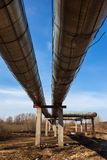 Elevated section of heating pipelines Stock Photography
