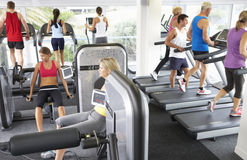 Elevated View Of Busy Gym With People Exercising On Machines Stock Photography