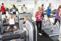 Elevated View Of Busy Gym With People Exercising On Machines Stock Photos