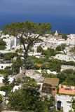 Elevated view of Capri, an Italian island off the Sorrentine Peninsula on the south side of Gulf of Naples, in the region of Campa Stock Photo