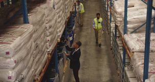 Staff working in a warehouse storage bay 4k stock footage
