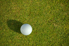 Elevated view of golf ball on grass Royalty Free Stock Image