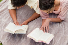 Elevated view of two friends reading while on a blanket Royalty Free Stock Images