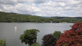 Elevated view of Windermere Lake District England uk with a sailing boat with sail and trees coloured red brown stock video footage