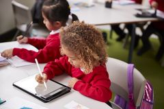 Elevated view of young schoolgirl wearing school uniform sitting at desk in an infant school classroom using a tablet computer and. Stylus, close up royalty free stock photography