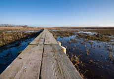 Elevated walkway over a marsh Royalty Free Stock Photos