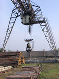 Elevating crane2. Elevating crane for a raising of forest products Royalty Free Stock Image