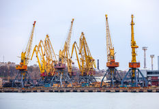 Elevating cranes in port Stock Photography