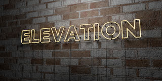 ELEVATION - Glowing Neon Sign on stonework wall - 3D rendered royalty free stock illustration Stock Images