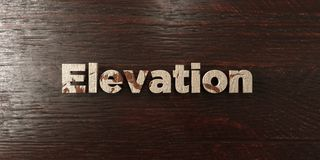 Elevation - grungy wooden headline on Maple  - 3D rendered royalty free stock image Royalty Free Stock Photography