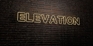 ELEVATION -Realistic Neon Sign on Brick Wall background - 3D rendered royalty free stock image Stock Photo