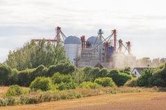 Elevatore di grano Immagine Stock