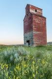 Elevatore di grano abbandonato lungo Immagine Stock
