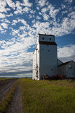Elevatore di grano di legno bianco sotto cielo blu splendido Immagine Stock Libera da Diritti