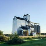 Elevatore di grano vicino al tramonto Fotografia Stock Libera da Diritti