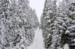 Elevatore di pattino della presidenza e paesaggio della neve. La Bulgaria Fotografie Stock