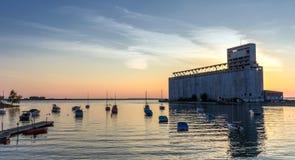 Elevatori di grano della Buffalo fotografia stock libera da diritti