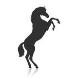 Elevazione del Pinto Horse Illustration nella progettazione piana Immagini Stock