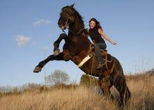 Elevazione stallion e della ragazza Immagine Stock