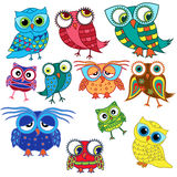 Eleven cartoon amusing owls. Set of eleven colourful cartoon amusing owls with big eyes and with glasses isolated on the white background, vector illustration royalty free illustration