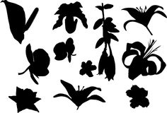 Eleven flower silhouettes Royalty Free Stock Photography