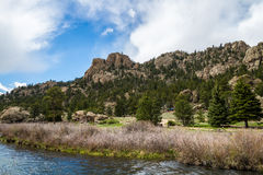 Eleven Mile Canyon Colorado. Beautiful spring and summer nature landscapes taken at Eleven Mile Canyon inside the Pike National Forest of South Central Colorado royalty free stock image
