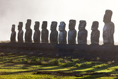Eleven standing moai in Easter Island. With green grass and white background royalty free stock photography