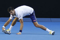 Eleven times Grand Slam champion Novak Djokovic of Serbia in action during his round 4 match at Australian Open 2016 Stock Image