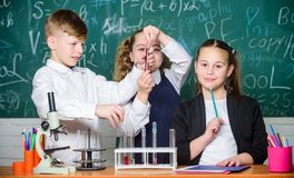 Elever studerar kemi i skola Den kemiska vikten uppl?ser i andra Ungar tycker om kemiskt experiment Undersökning är royaltyfria foton