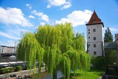 Elevi con una torre nei precedenti a Praga Fotografie Stock Libere da Diritti